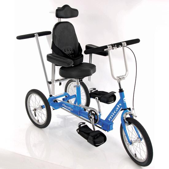 Bikes For Handicapped Adults The Ultimate trike for