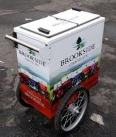 Vending Hot Dog And Ice Cream Carts From Worksman Cycles