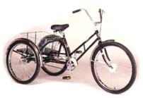 Worksman Adaptable Industrial Trike